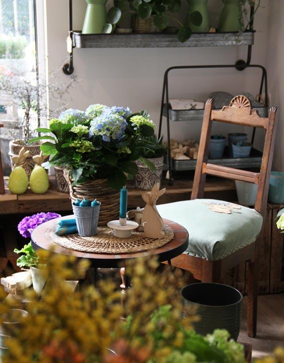 Foto Innenbereich Blumen Laden Obeser
